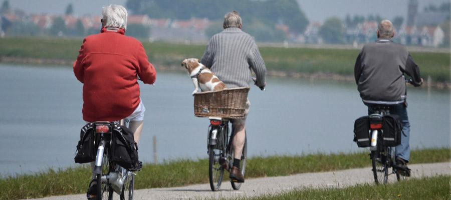 ancianos montan en bicicleta